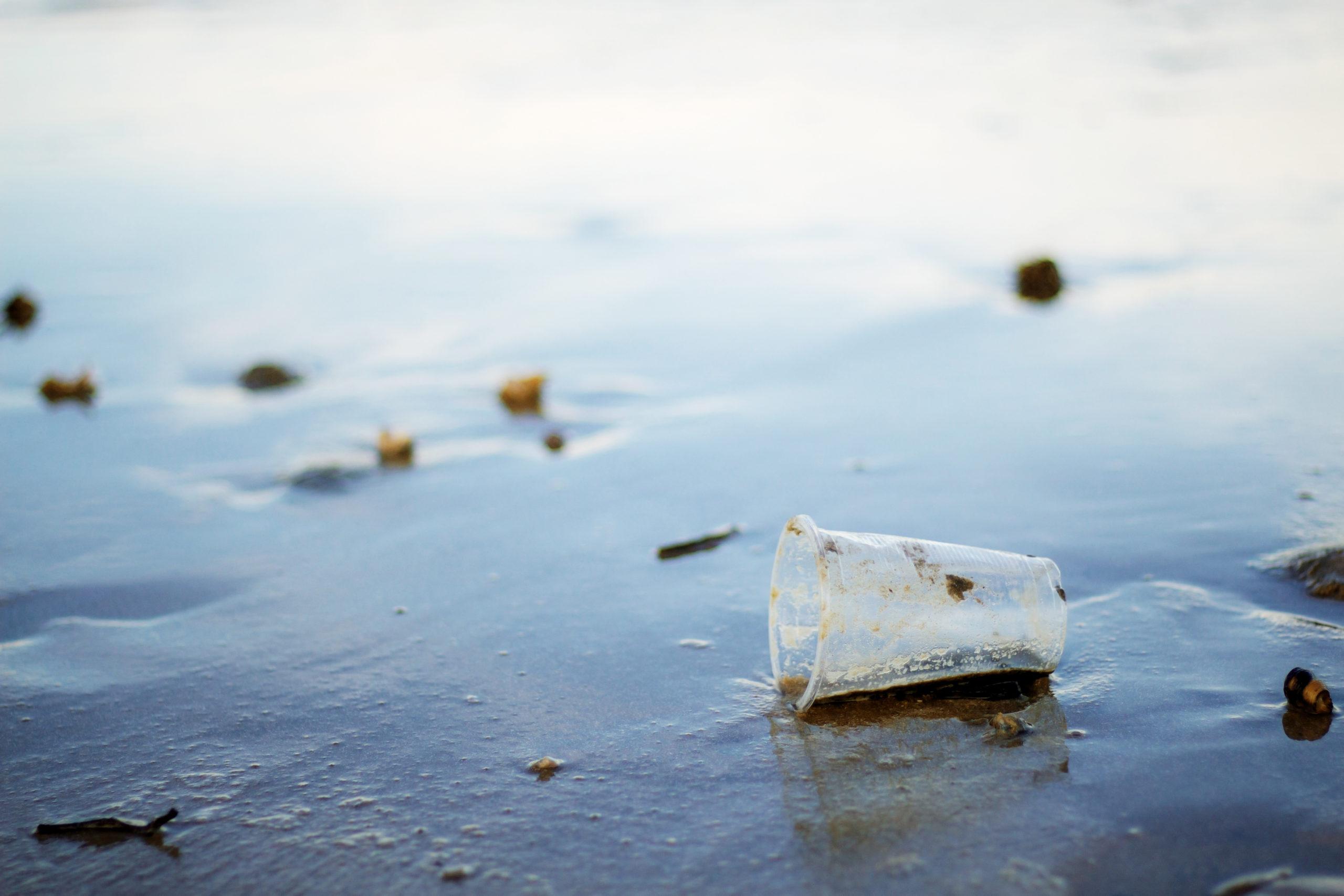 Cambios de hábitos para luchar contra el cambio climático